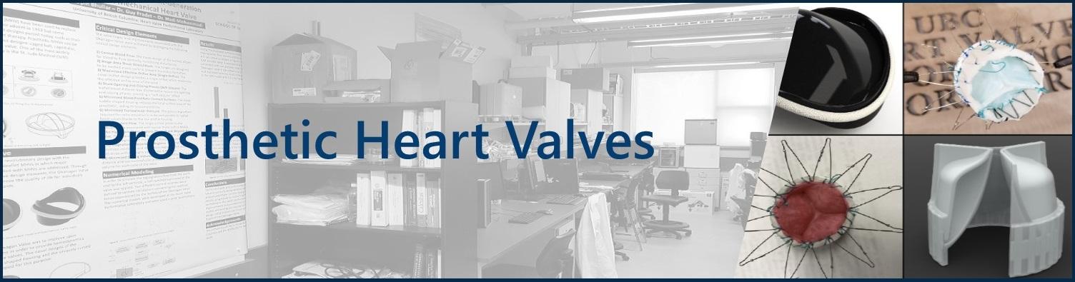 Heart Valves Banner